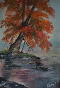 Höst,Träd,Landskap
