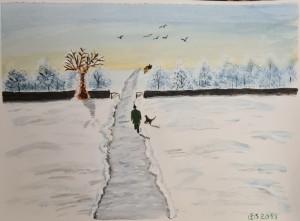 Vinterlandskap,Promenad,Hund